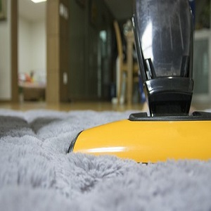 Things To Look For In A Carpet Cleaner